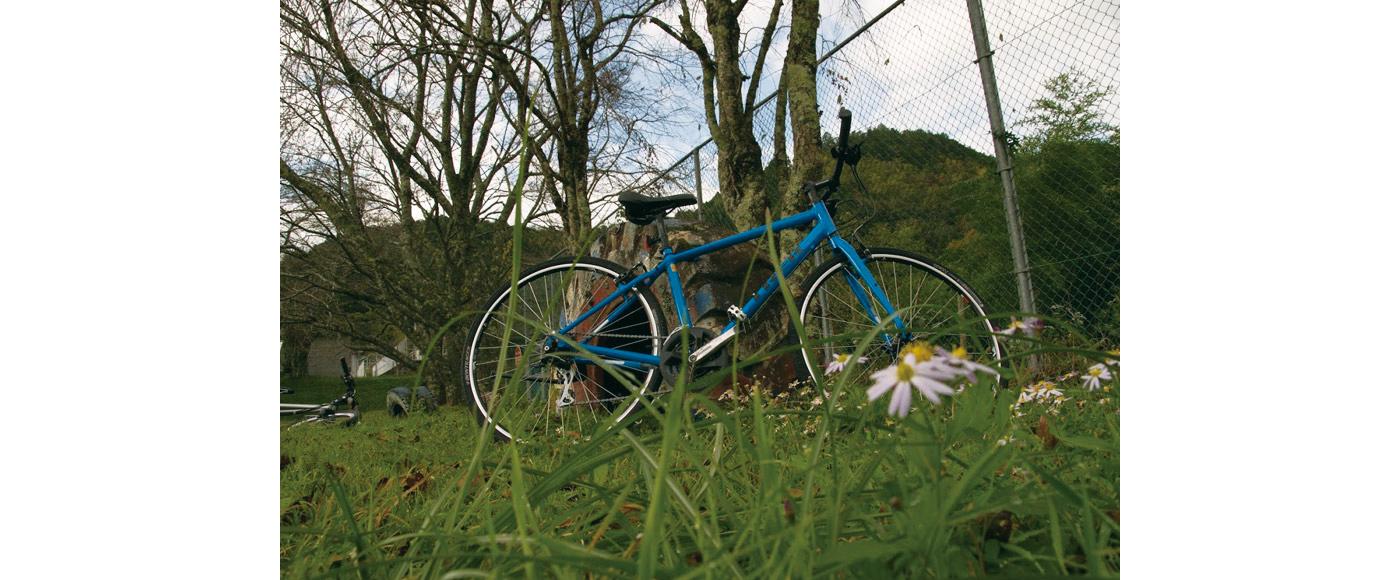 GOMAサイクリングツアーのメインバイク「TREK FX2」素晴らしいクロスバイクです。