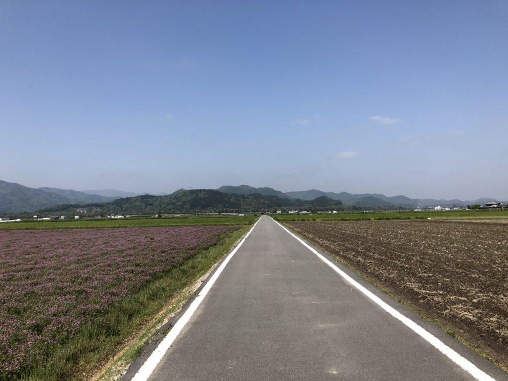 フラットで気持ちの良い田舎道をゆっくりサイクリング!