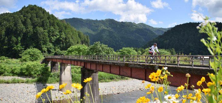 夏休みに家族旅行で行きたい京都のおすすめサイクリングツアースポット