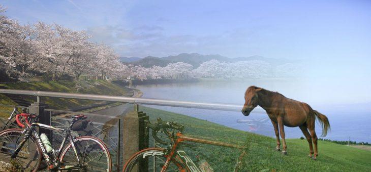 【祝!本発売】京都郊外おすすめサイクリングコース【騎馬の道 日吉GOMA~亀岡】
